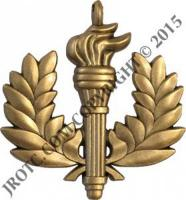 N-1-1 (Medal Only) Distinguished Cadet - each