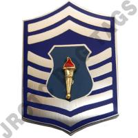 Senior Master Sergeant AFJROTC Pin on Rank (PR)