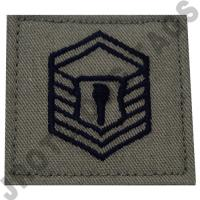 Master Sergeant (MSGT) ABU Rank JROTC Hook Back (Each)