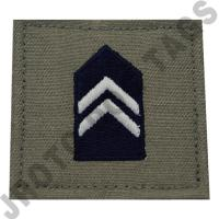 1st Lieutenant (1st LT) ABU Rank JROTC Hook Back (Each)
