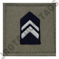 Lieutenant Colonel (LT COL) ABU Rank JROTC Hook Back (Each)