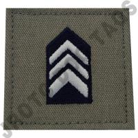 Colonel (COL) ABU Rank JROTC Hook Back (Each)